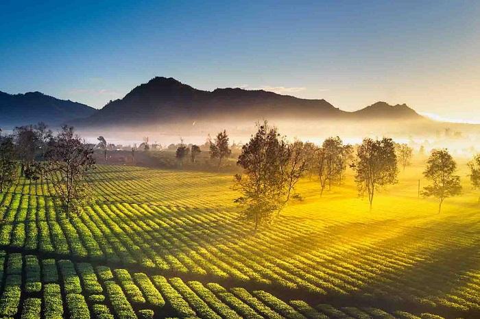 Hình ảnh cảnh đẹp Tây Nguyên
